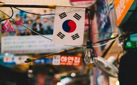 """加密货币""""沃土""""?重新认识韩国"""