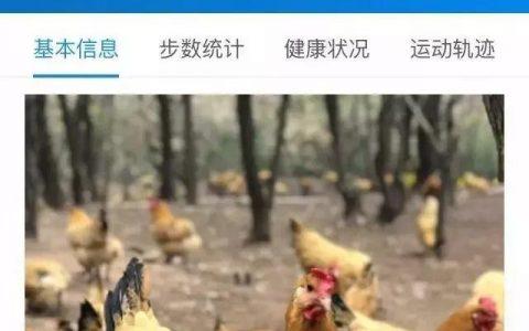"""除了养鸡,""""区块链+农业""""还能干什么?"""