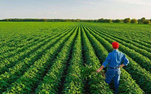 区块链+农业如何实现?