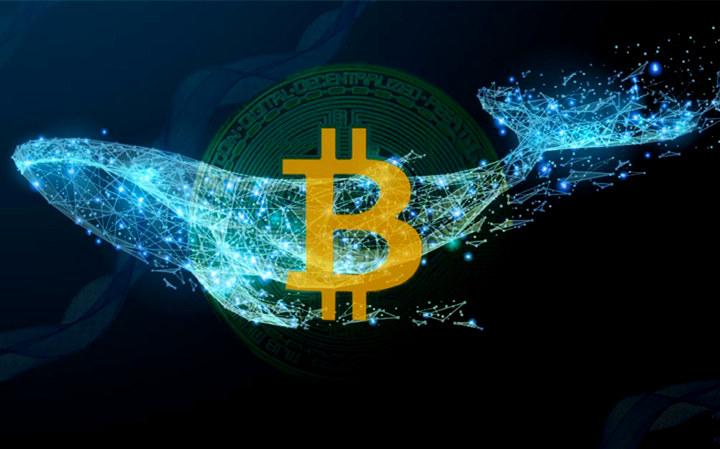 比特币恐慌指数创新低,Coinbase数据却说巨鲸在买入
